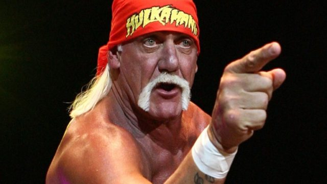 Hulk Hogan's Height, Weight And Body Measurements